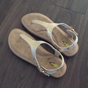 Brand New Gold Sandals ✨